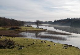 Woodhall Loch-View-South (Courtesy: S.Littlewood)